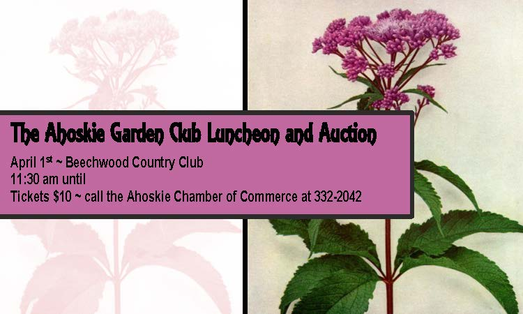 Ahoskie Garden Club Luncheon and Auction April 1st!